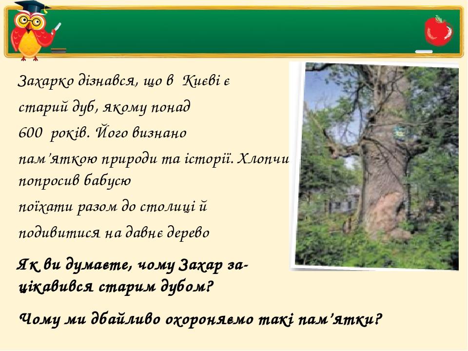 Захарко дізнався, що в Києві є старий дуб, якому понад 600 років. Його визнано пам'яткою природи та історії. Хлопчик попросив бабусю поїхати разо...