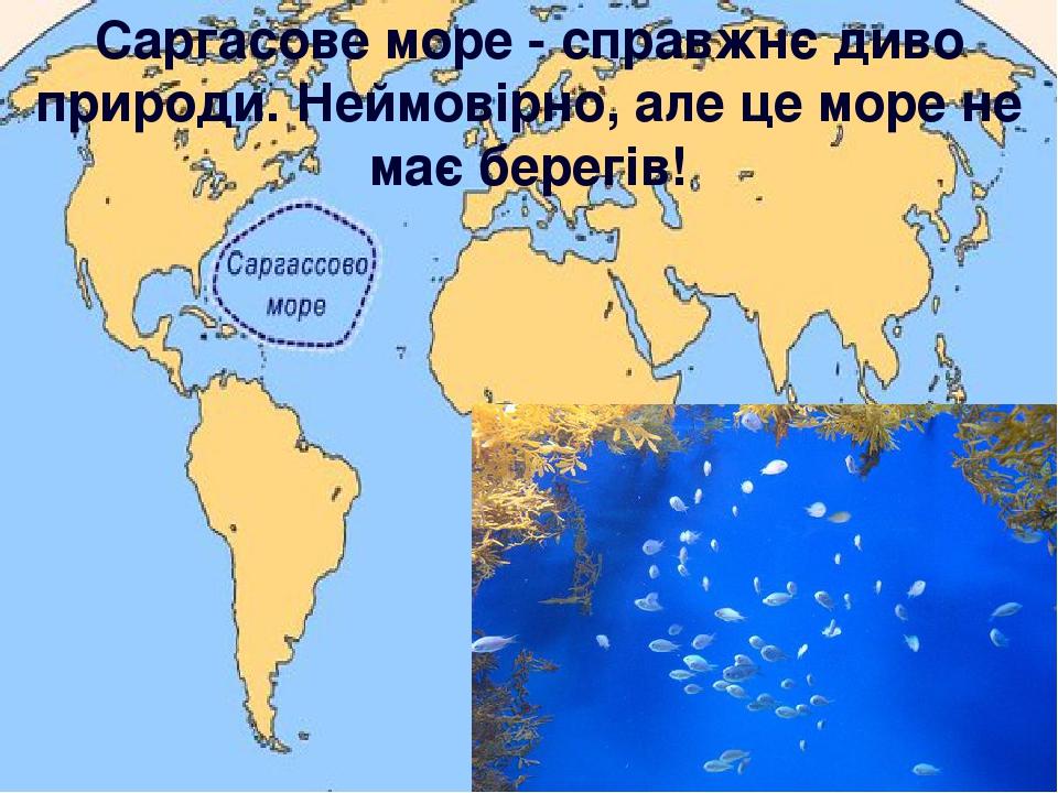 Саргасове море - справжнє диво природи. Неймовірно, але це море не має берегів!