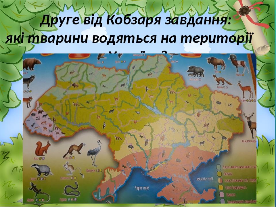 Друге від Кобзаря завдання: які тварини водяться на території України?