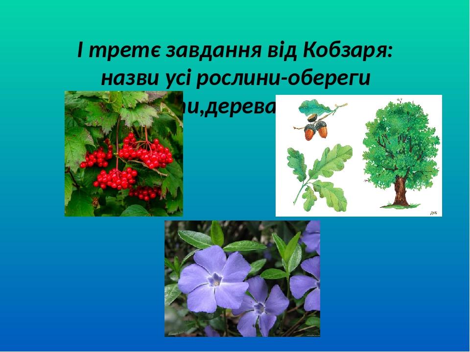 І третє завдання від Кобзаря: назви усі рослини-обереги (квіти,дерева,кущі)