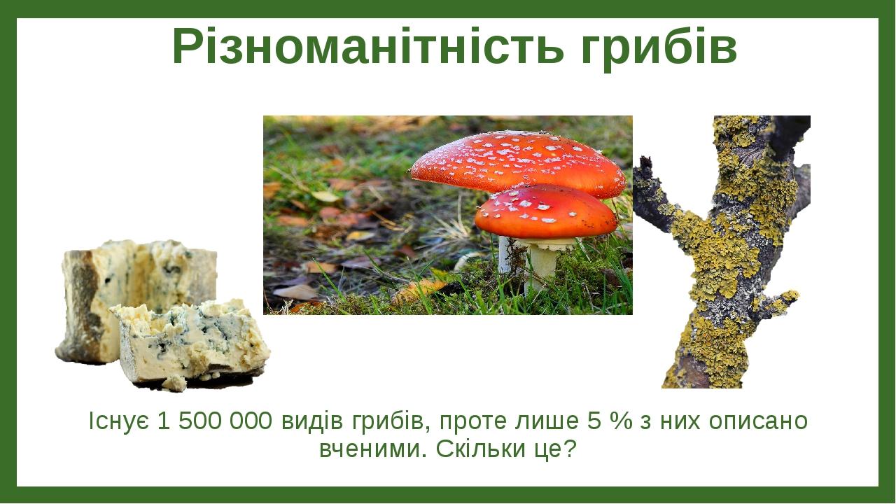 Різноманітність грибів Існує 1 500 000 видів грибів, проте лише 5 % з них описано вченими. Скільки це?
