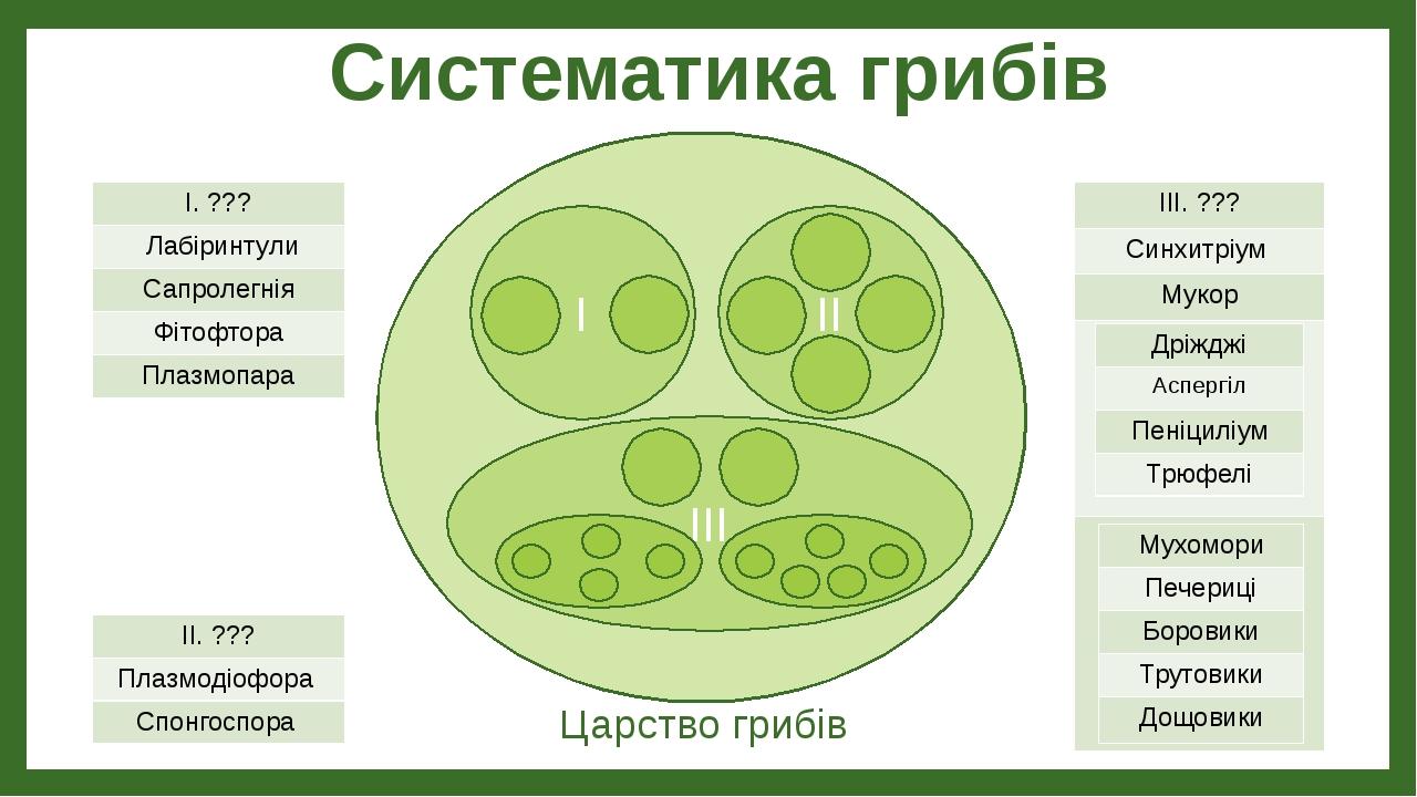 Систематика грибів Царство грибів I II III I.??? Лабіринтули Сапролегнія Фітофтора Плазмопара II.??? Плазмодіофора Спонгоспора III.??? Синхитріум...
