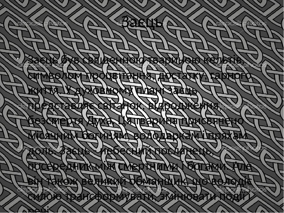Заєць Заєць був священною твариною кельтів, символом процвітання, достатку, гарного життя. У духовному плані заєць представляє світанок, відродженн...