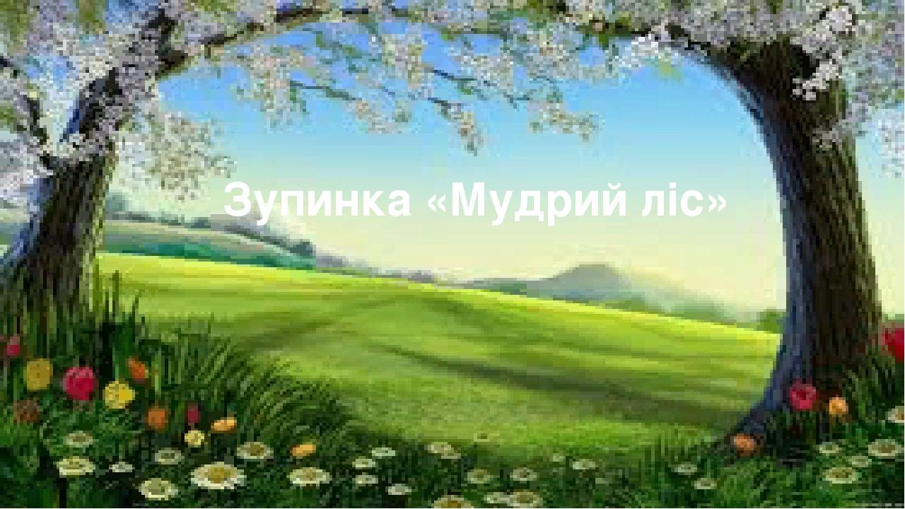 Зупинка «Мудрий ліс»