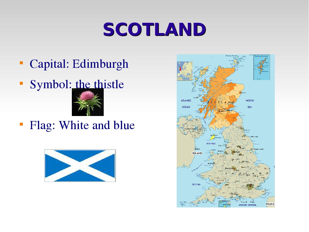 SCOTLAND Capital: Edimburgh Symbol: the thistle Flag: White and blue