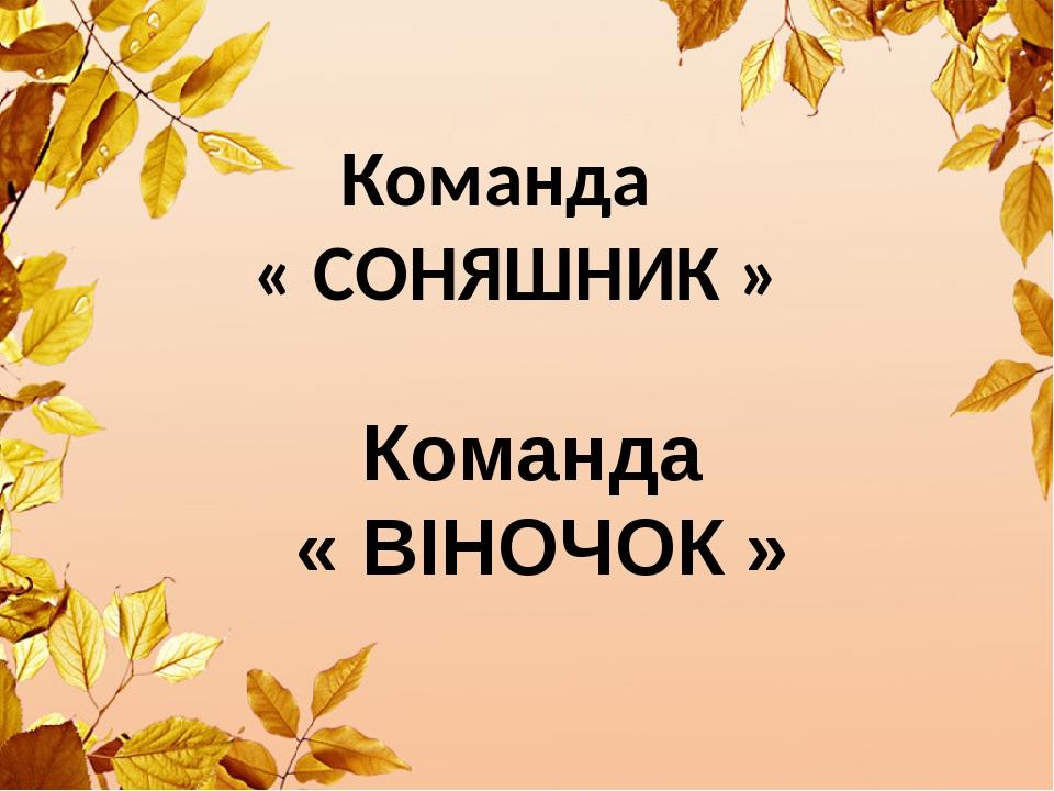 Команда « СОНЯШНИК » Команда « ВІНОЧОК »