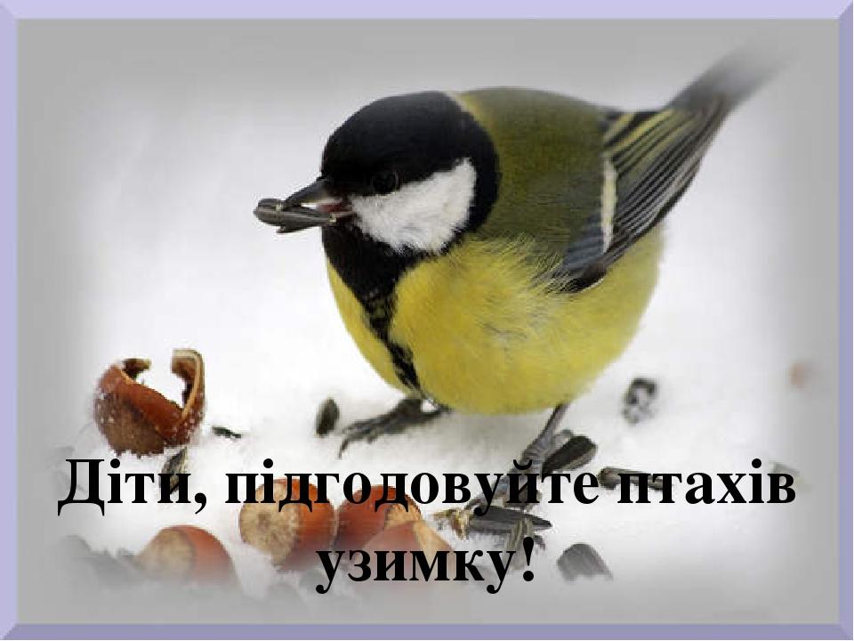 Діти, підгодовуйте птахів узимку!