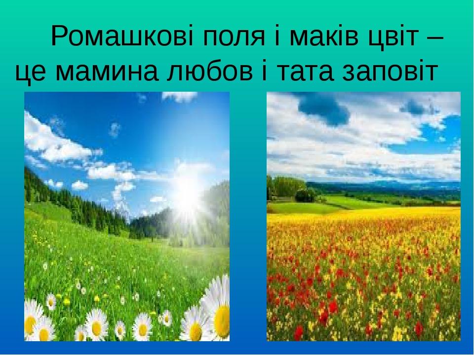 Ромашкові поля і маків цвіт – це мамина любов і тата заповіт