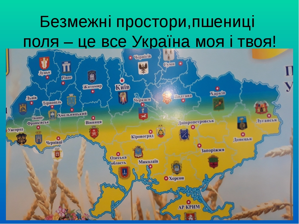 Безмежні простори,пшениці поля – це все Україна моя і твоя!