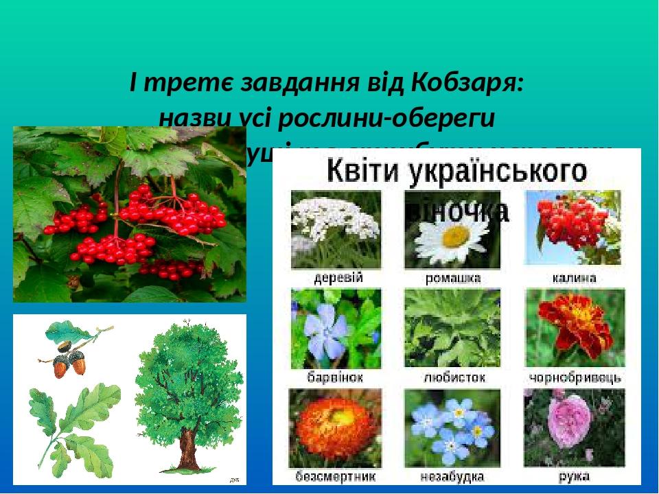 І третє завдання від Кобзаря: назви усі рослини-обереги (квіти,дерева,кущі та атрибути народних свят)