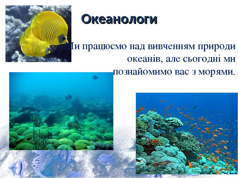 Океанологи Ми працюємо над вивченням природи океанів, але сьогодні ми познайомимо вас з морями.