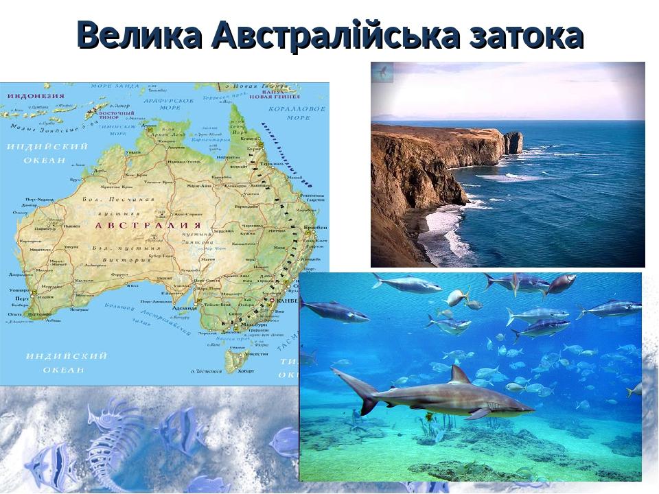 Велика Австралійська затока