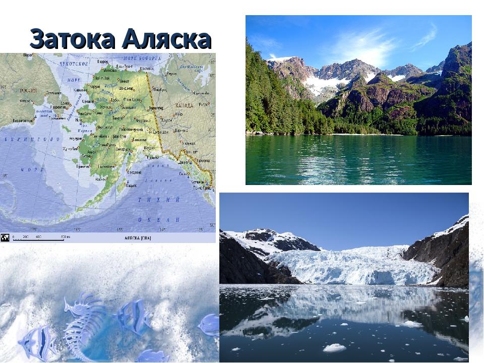 Затока Аляска