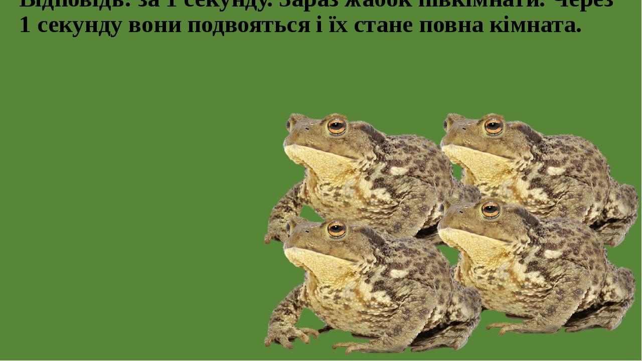 Відповідь: за 1 секунду. Зараз жабок півкімнати. Через 1 секунду вони подвояться і їх стане повна кімната.