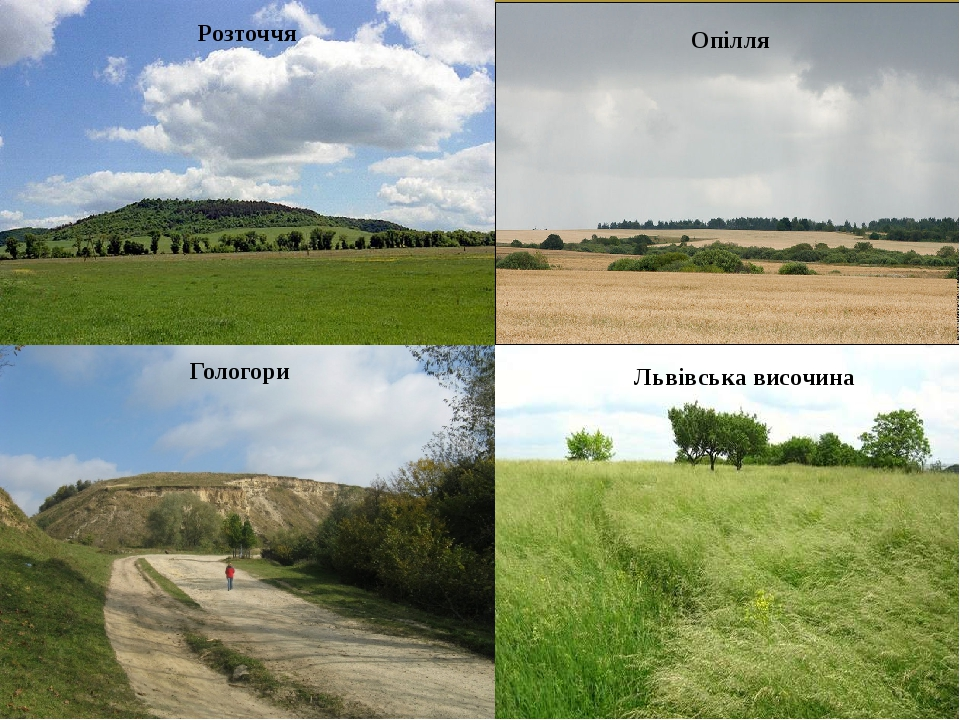Розточчя Опілля Гологори Львівська височина