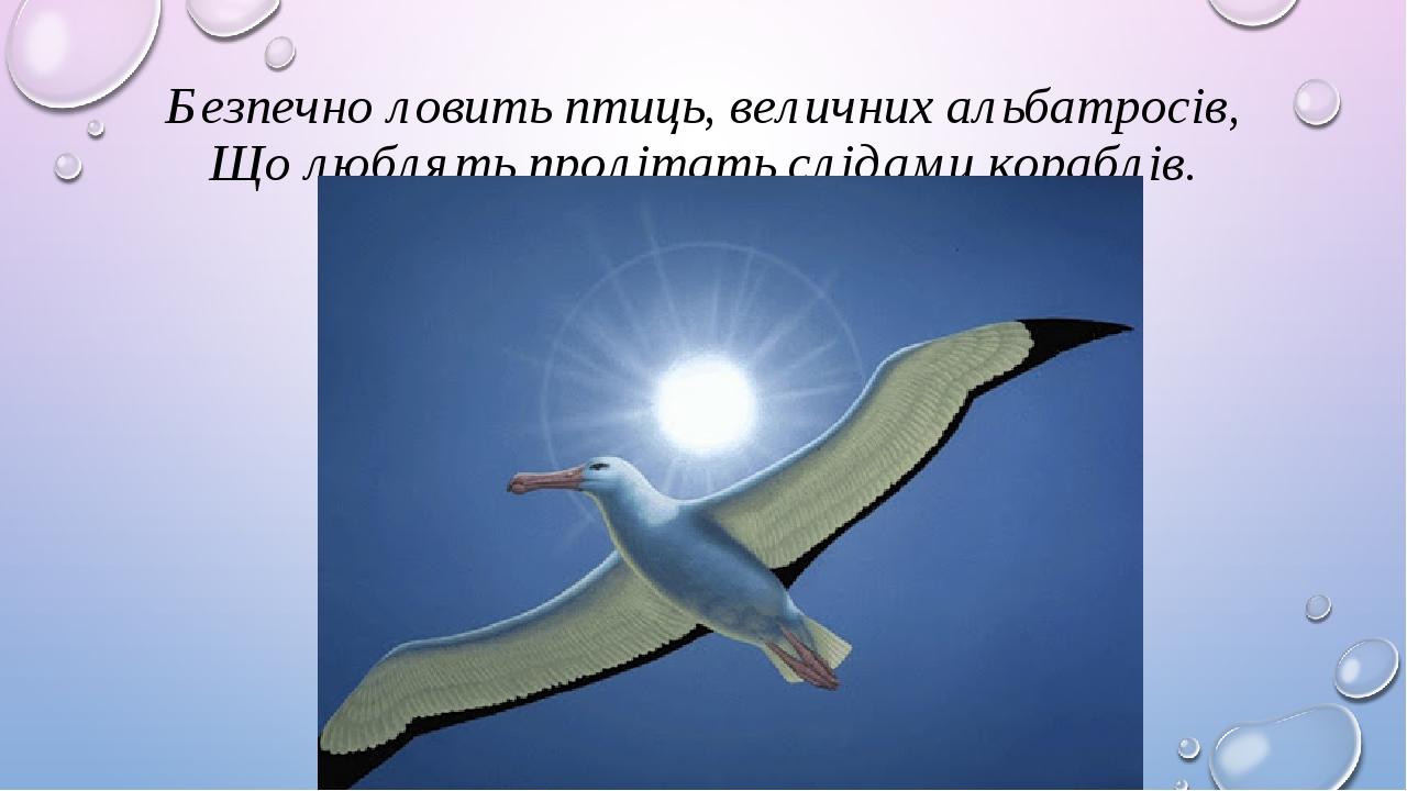 Безпечно ловить птиць, величних альбатросів, Що люблять пролітать слідами кораблів.