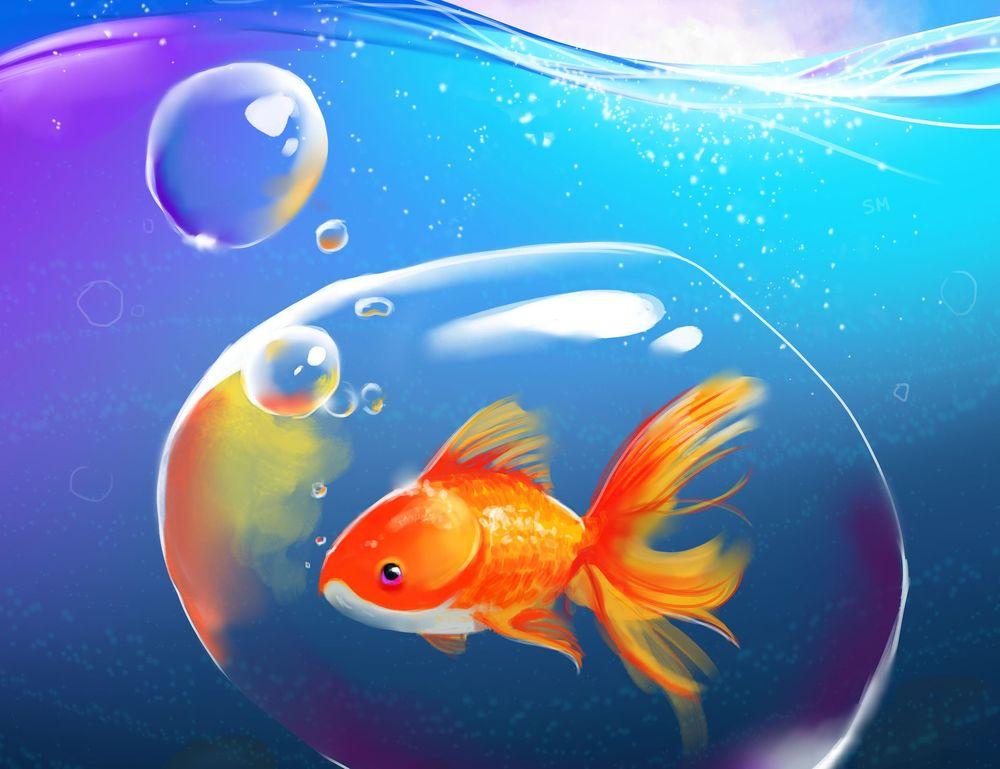 картинки золотая рыбка на рабочем столе западным меркам