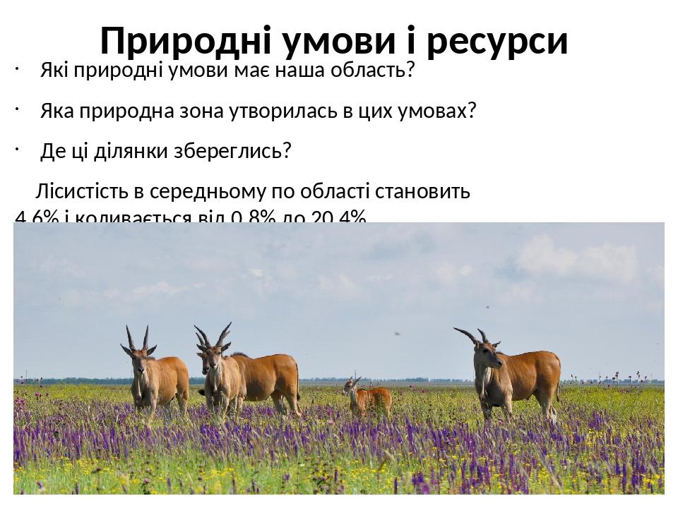 Природні умови і ресурси Які природні умови має наша область? Яка природна зона утворилась в цих умовах? Де ці ділянки збереглись? Лісистість в сер...