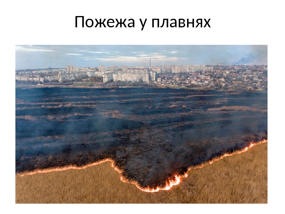 Пожежа у плавнях