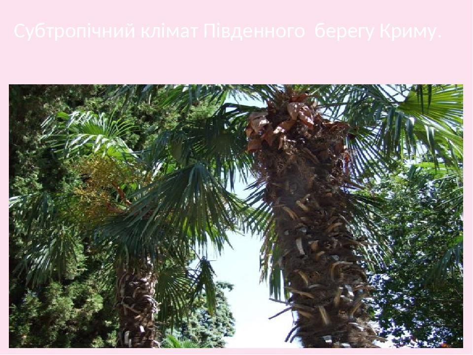 Субтропічний клімат Південного берегу Криму.