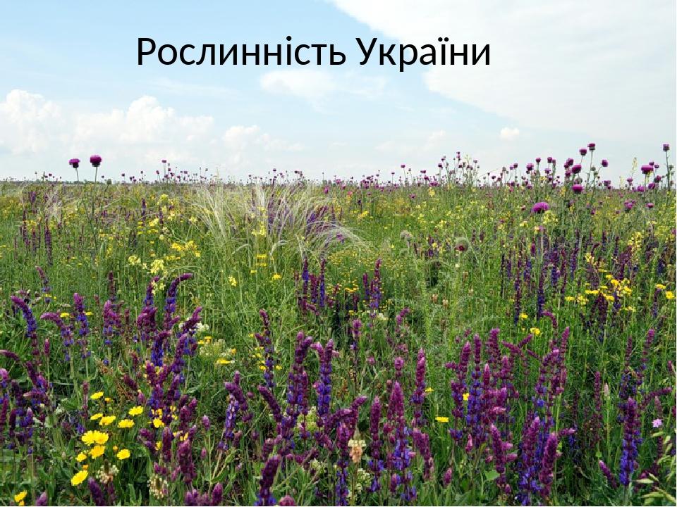 Рослинність України