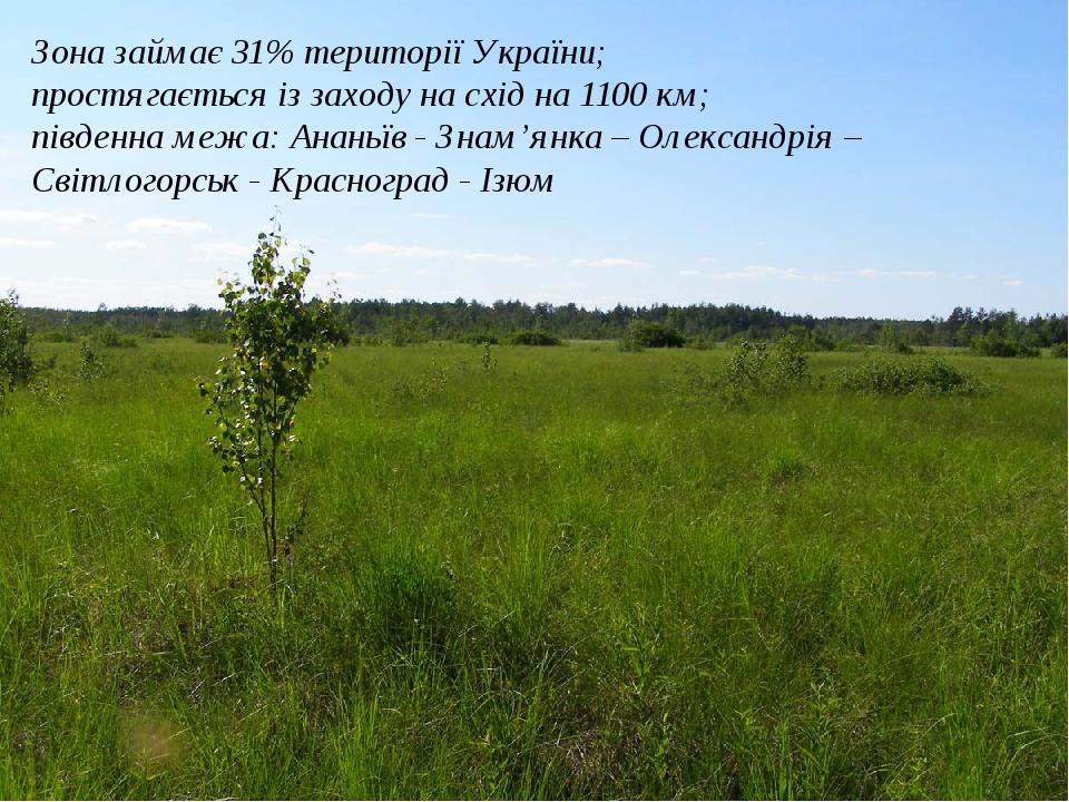 Зона займає 31% території України; простягається із заходу на схід на 1100 км; південна межа: Ананьїв - Знам'янка – Олександрія –Світлогорськ - Кра...