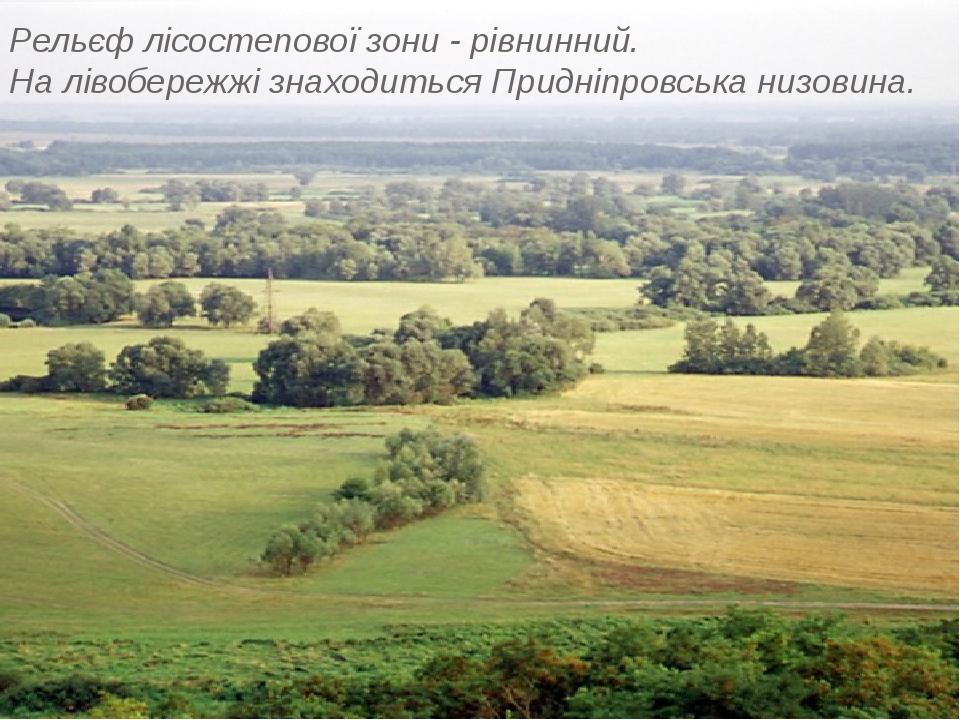 Рельєф лісостепової зони - рівнинний. На лівобережжі знаходиться Придніпровська низовина.