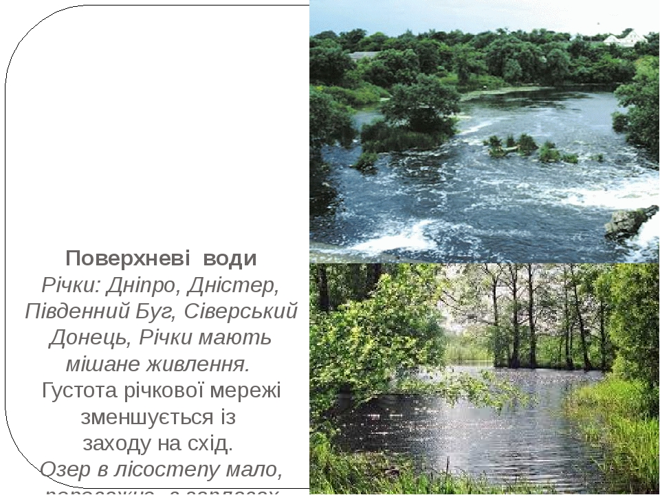 Поверхневі води Річки: Дніпро, Дністер, Південний Буг, Сіверський Донець, Річки мають мішане живлення. Густота річкової мережі зменшується із заход...