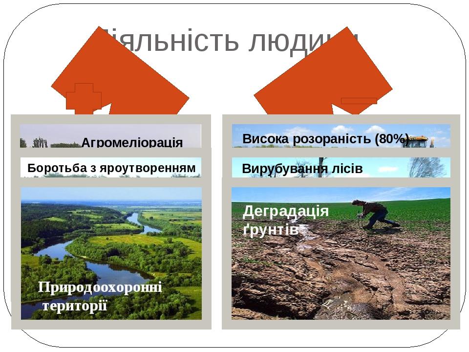 Діяльність людини Агромеліорація Боротьба з яроутворенням Природоохоронні території Висока розораність (80%) Вирубування лісів Деградація ґрунтів