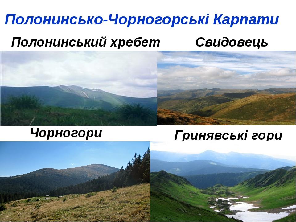 Полонинсько-Чорногорські Карпати Полонинський хребет Свидовець Чорногори Гринявські гори
