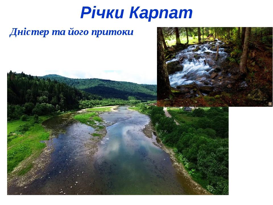 Річки Карпат Дністер та його притоки