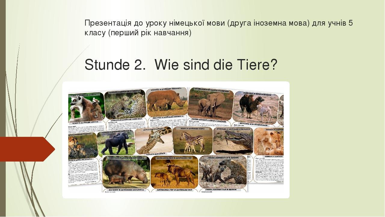Презентація до уроку німецької мови (друга іноземна мова) для учнів 5 класу (перший рік навчання) Stunde 2. Wie sind die Tiere?