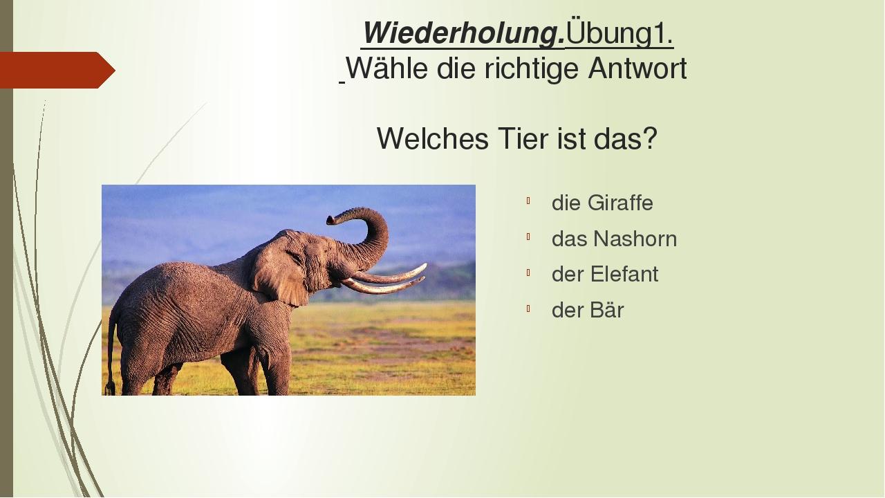 Wiederholung.Übung1. Wähle die richtige Antwort Welches Tier ist das? die Giraffe das Nashorn der Elefant der Bär