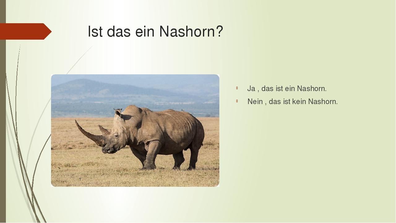 Ist das ein Nashorn? Ja , das ist ein Nashorn. Nein , das ist kein Nashorn.