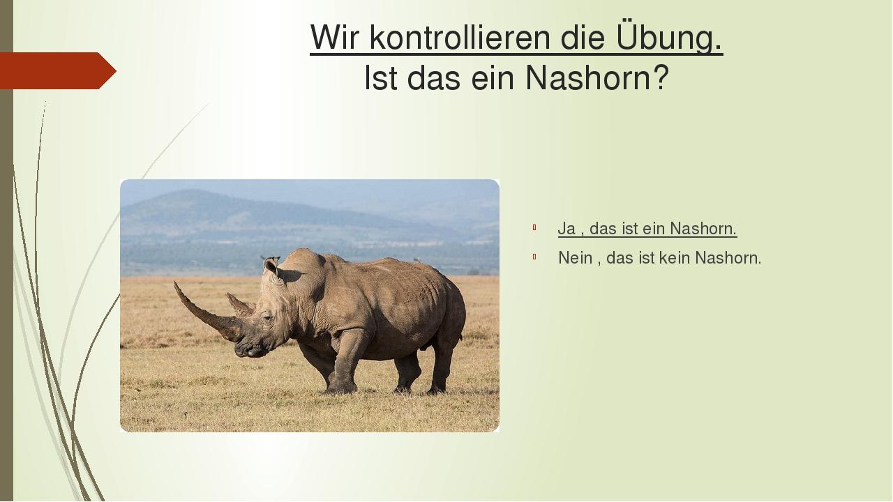 Wir kontrollieren die Übung. Ist das ein Nashorn? Ja , das ist ein Nashorn. Nein , das ist kein Nashorn.