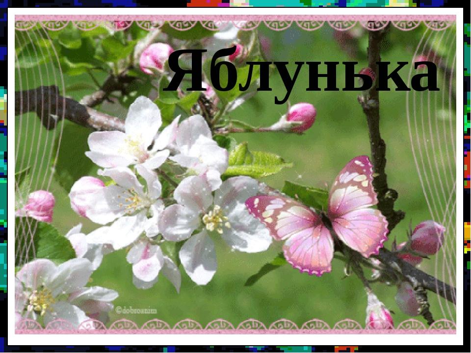 Яблунька