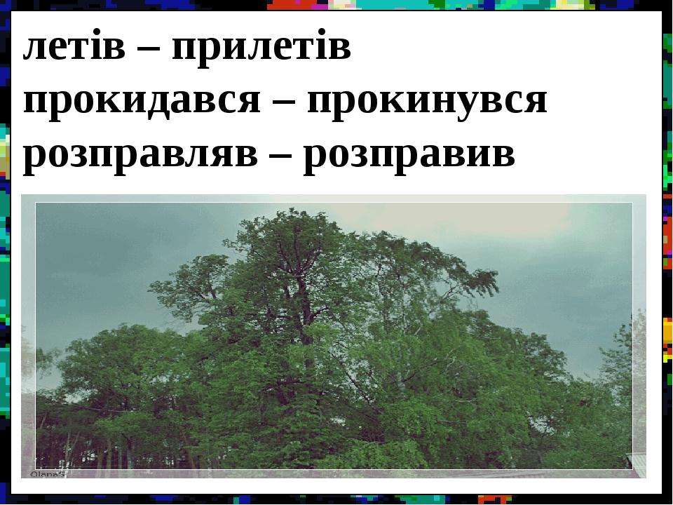 летів – прилетів прокидався – прокинувся розправляв – розправив