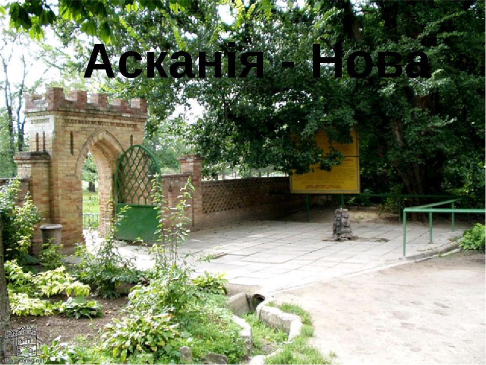 Асканія - Нова