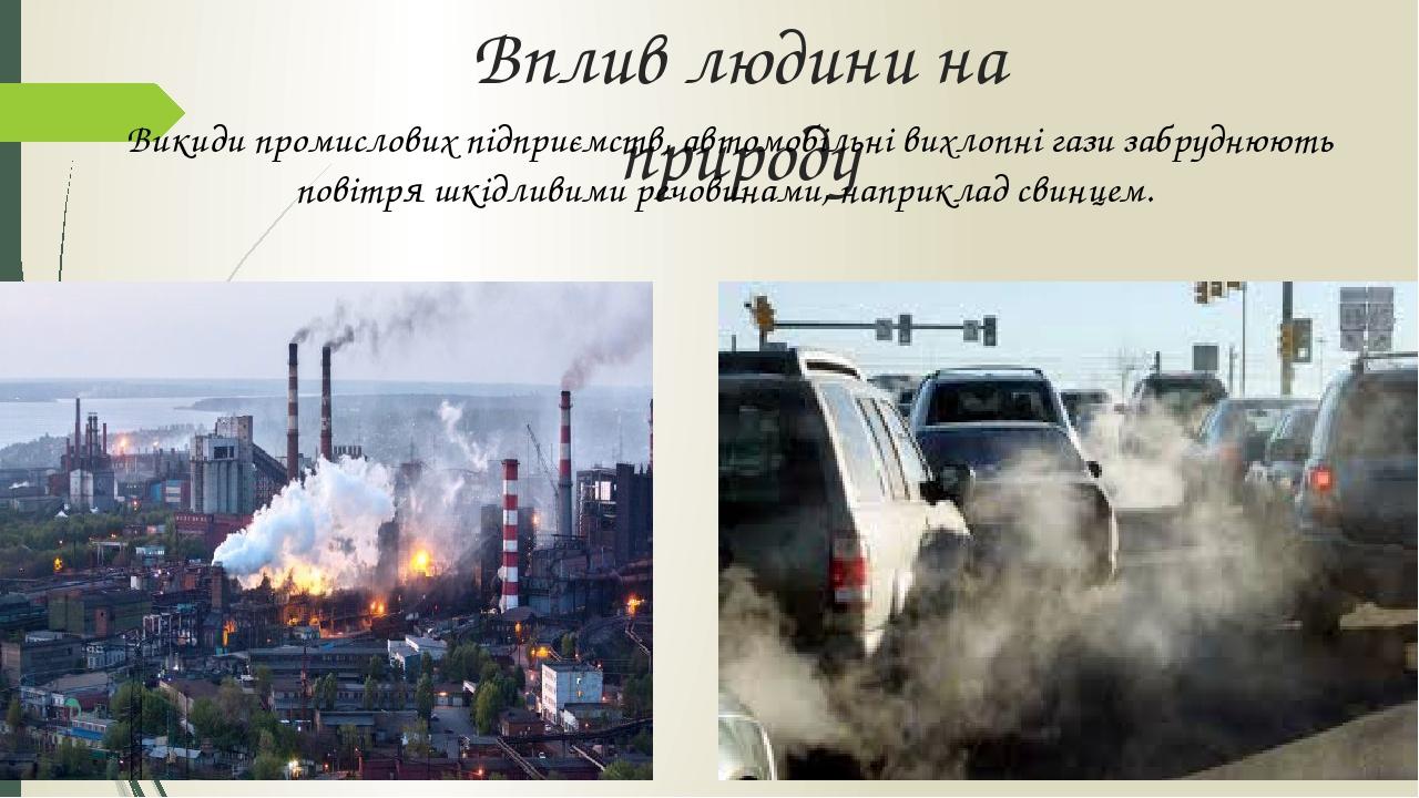 Вплив людини на природу Викиди промислових підприємств, автомобільні вихлопні гази забруднюють повітря шкідливими речовинами, наприклад свинцем.