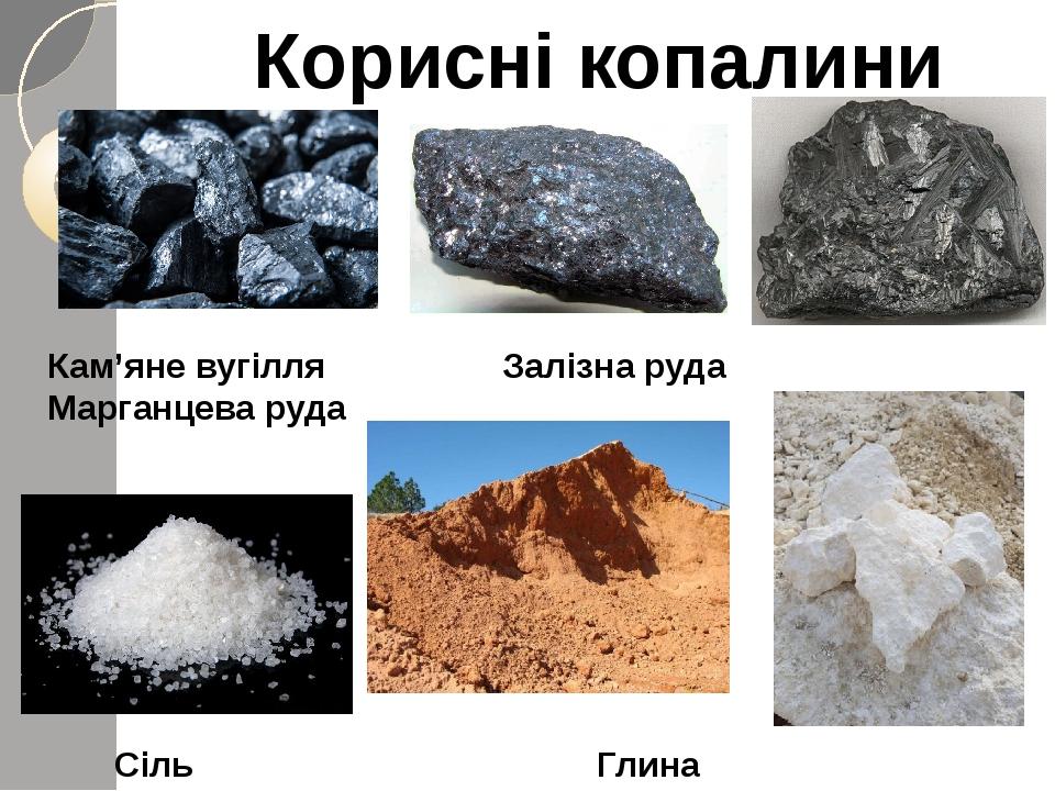 Корисні копалини Кам'яне вугілля Залізна руда Марганцева руда Сіль Глина Вапняк