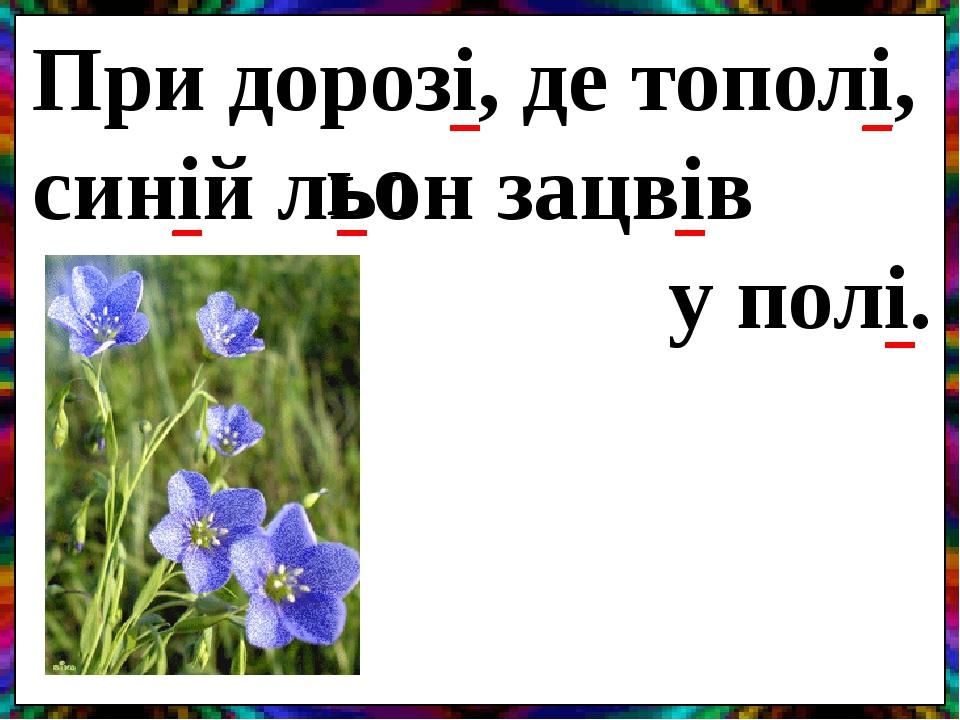При дорозі, де тополі, синій льон зацвів у полі. ьо