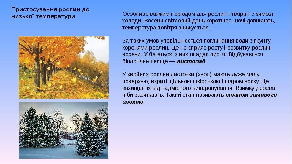 Пристосування рослин до низької температури Особливо важким періодом для рослин і тварин є зимові холоди. Восени світловий день коротшає, ночі довш...