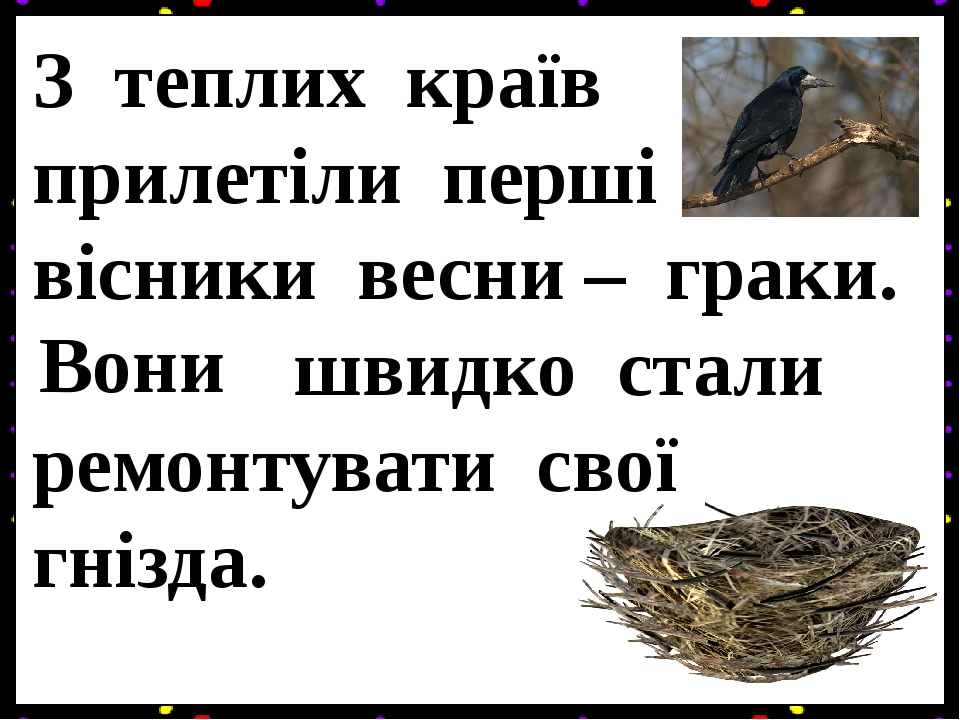 З теплих країв прилетіли перші вісники весни – граки. Граки швидко стали ремонтувати свої гнізда. Вони