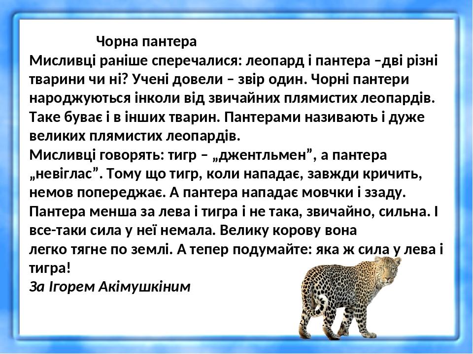 Чорна пантера Мисливці раніше сперечалися: леопард і пантера –дві різні тварини чи ні? Учені довели – звір один. Чорні пантери народжуються інколи ...