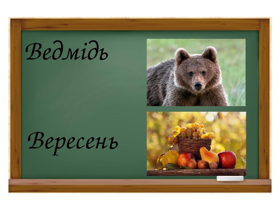 Ведмідь Вересень